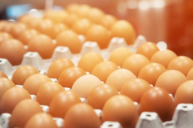 Zamknij całe jajka w pudełku. jaja kurze wiele. nieostrość