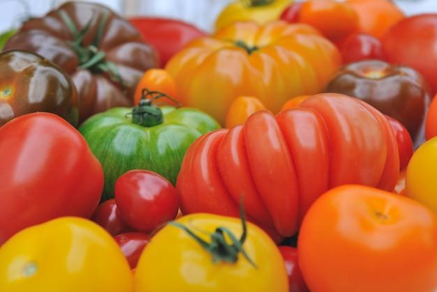 Zamknij czerwone pomidory z innymi odmianami i kolorami