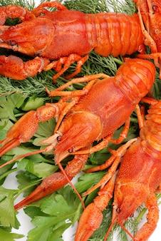 Zamknij homary z zieleniną