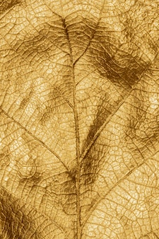 Zamknij makro szczegóły ręcznie malowanego złotego metalicznego liścia dębu świątecznego jesiennego pionowego tła
