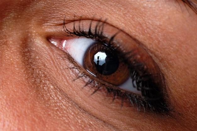Zamknij niebieskie oko z naturalnym makijażem, patrząc na boczne zdjęcie makro z idealną skórą