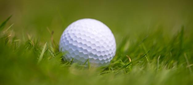 Zamknij piłkę golfową w trawie