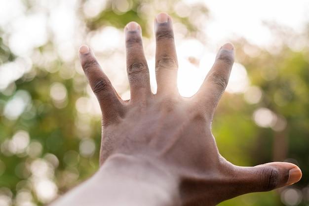 Zamknij ręce i rozmyte liście