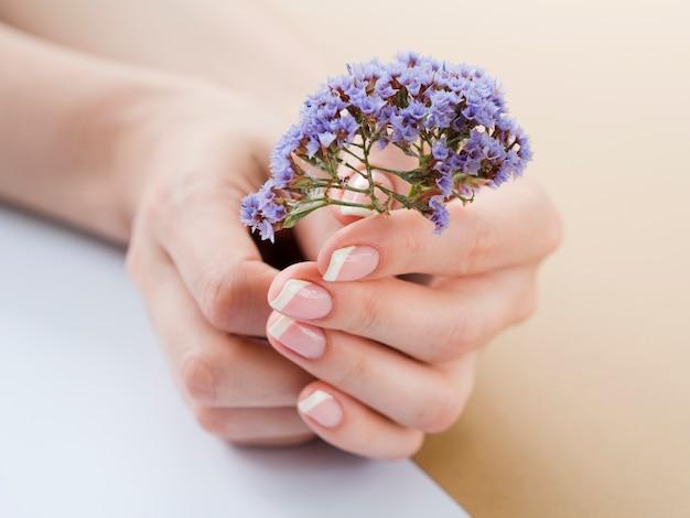 Zamknij się kobieta ręce trzymając fioletowe kwiaty