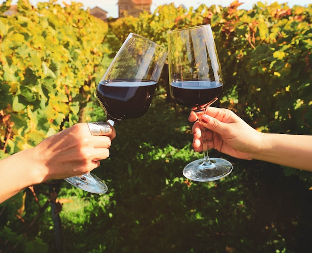 Zamknij się na rękach opiekania kieliszki do czerwonego wina w winnicy