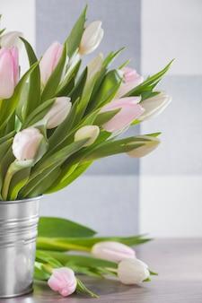 Zamknij się pierwszy kwiat po zimie
