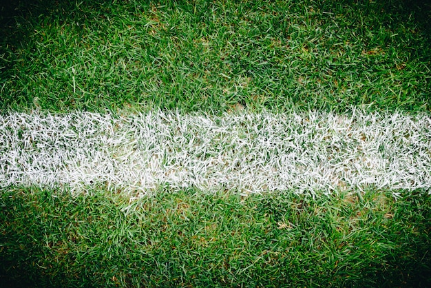 Zamknij się trawy i znaki na boisko do piłki nożnej lub piłki nożnej