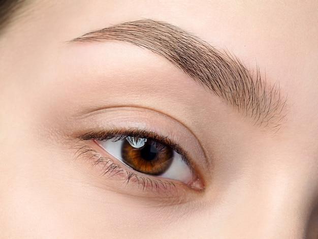 Zamknij się widok na piękne brązowe kobiece oko. idealna modna brew. dobre widzenie, soczewki kontaktowe, pasek do brwi lub koncepcja makijażu brwi