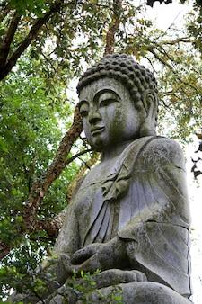 Zamknij się widok pięknej posągu buddy w parku.