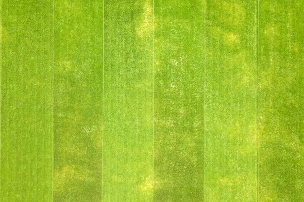 Zamknij się widok z lotu ptaka powierzchni zielonej świeżo skoszonej trawy na stadionie w lecie.