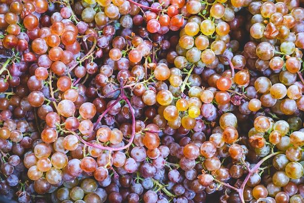 Zamknij się wiele pięknych słodkich wielokolorowych jagód winogron, tło naturalnej żywności ekologicznej