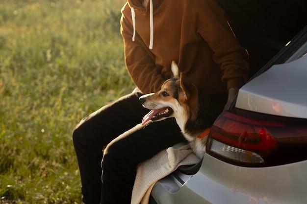Zamknij się właściciel i słodki pies z samochodem