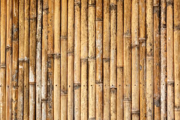 Zamknij się z bambusa drewna tekstury tła.