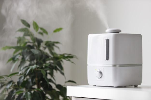 Zamknij się z dyfuzorem olejków aromatycznych na stole w domu, pary z nawilżacza powietrza, rośliny doniczkowe