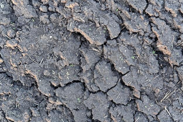 Zamknij się z suchej gleby z pękniętą teksturą ziemi