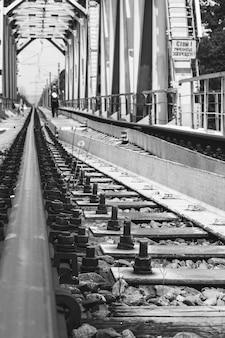 Zamknij szynę kolejową, a chłopiec i pies odchodzą na moście kolejowym