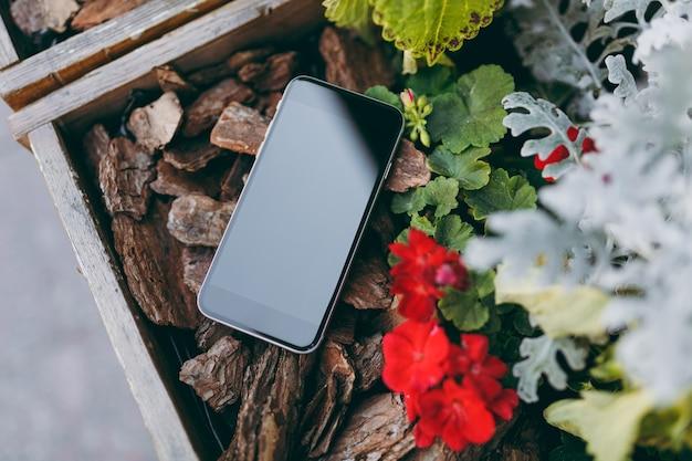 Zamknij telefon komórkowy z pustym pustym ekranem na kawałkach brązowych drewna czerwonych kwiatów