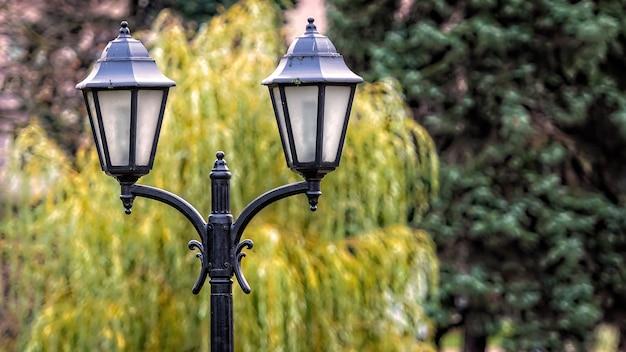 Zamknij widok na ozdobne stare latarnie uliczne na rozmytym parku