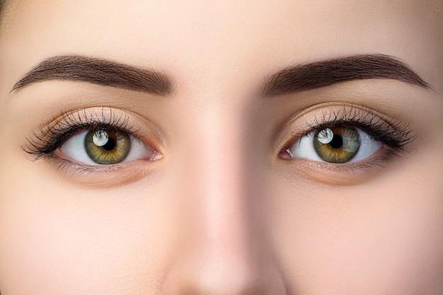 Zamknij widok pięknych brązowych kobiecych oczu. idealna modna brew. dobre widzenie, soczewki kontaktowe, pasek do brwi lub koncepcja makijażu brwi