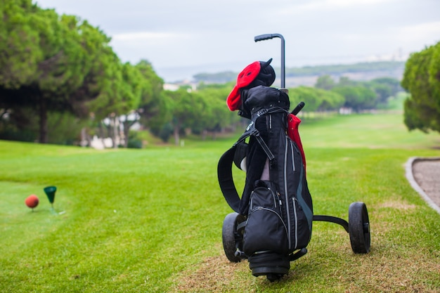 Zamyka up golfowa torba na zielonym perfect polu