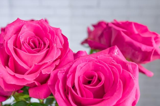 Zamyka up piękny bukiet różowe róże.