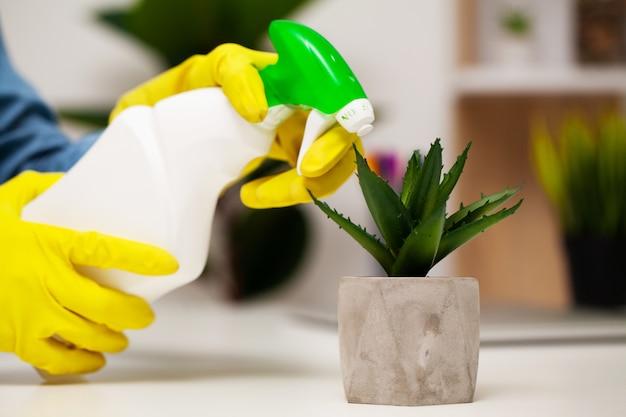 Zamyka up pracownik ręki obcierania pył w biurze w żółtych rękawiczkach