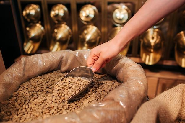 Zamyka up ręki mienia karmowa miarka z surową kawą