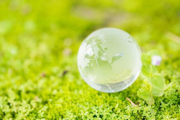 Zamyka up szklana kula ziemska w lesie.