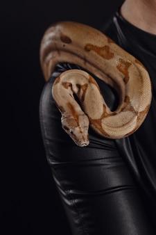 Zamyka w górę portreta seksowna kobieta z wężem w lateksowym stroju
