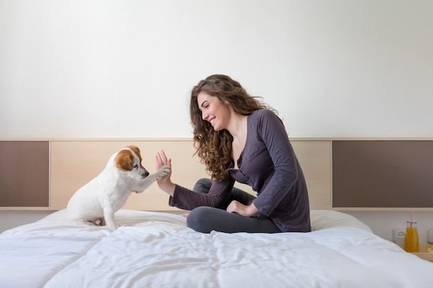 Zamyka w górę widoku kobiety ręki wysokość pięć z ślicznym małym psem nad bielem