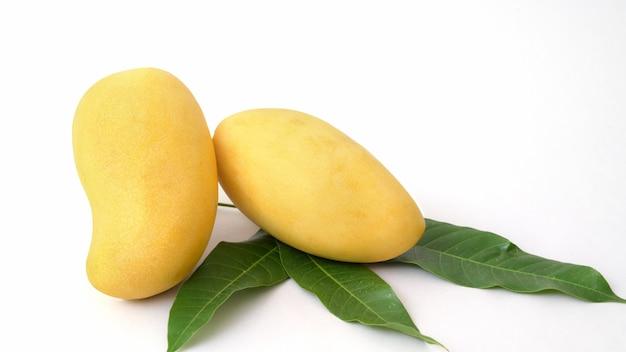 Zamyka w górę widoku mango i leavesl odizolowywający