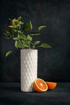 Zamyka w górę widoku na ornamentacyjnych rośliien białej nowożytnej wazie przeciw textured betonowej ścianie. holenderska martwa natura z nowoczesną dekoracją. koncepcja minimalizmu dla kwiaciarni. pomarańczowa i zielona roślina. kartka z życzeniami