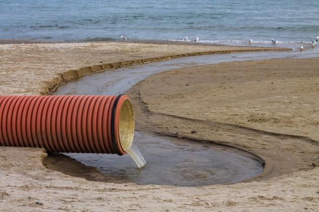 Zanieczyszczenie środowiska na plaży rura kanalizacyjna lub drenaż ptaki piją ścieki