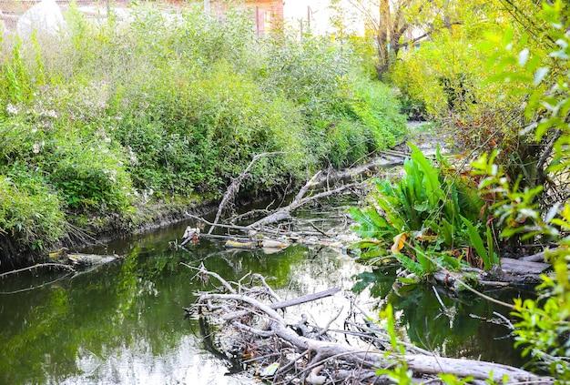 Zanieczyszczona rzeka na zewnątrz. plastikowa butelka w wodzie. szkodliwy człowiek dla natury. globalne ocieplenie.