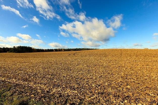 Zaorana ziemia uprawna - ziemia zaorana, aby wyrosnąć i wydać nowe plony