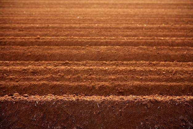 Zaorane pola uprawne gleby czerwonej gliny