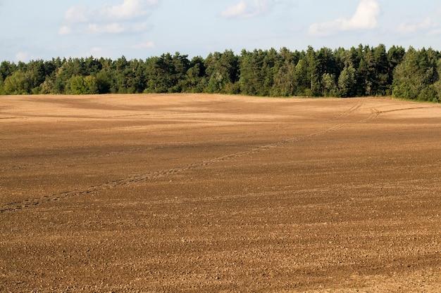 Zaorane pole uprawne w pobliżu lasu z zielonym ulistnieniem i drzewami mieszanymi