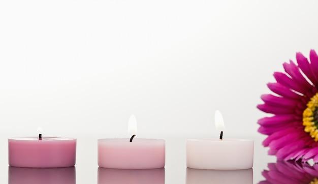 Zapalone świece i różowy gerbera