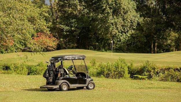 Zaparkowany wózek golfowy. bali. indonezja