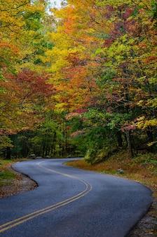 Zapierająca dech w piersiach droga otoczona pięknymi i kolorowymi jesiennymi drzewami