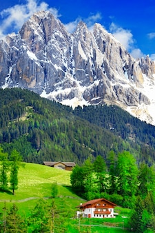 Zapierająca dech w piersiach przyroda dolomitów. alpy włoskie