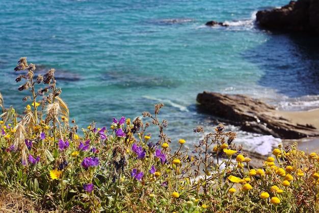 Zapierająca dech w piersiach sceneria pięknego morza z formacjami skalnymi i kwiatami na wybrzeżu