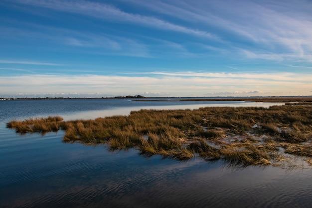 Zapierające dech w piersiach błękitne, czyste niebo i jezioro z trawą