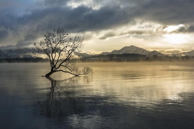Zapierające dech w piersiach ujęcie jeziora wanaka w wiosce wanaka w nowej zelandii