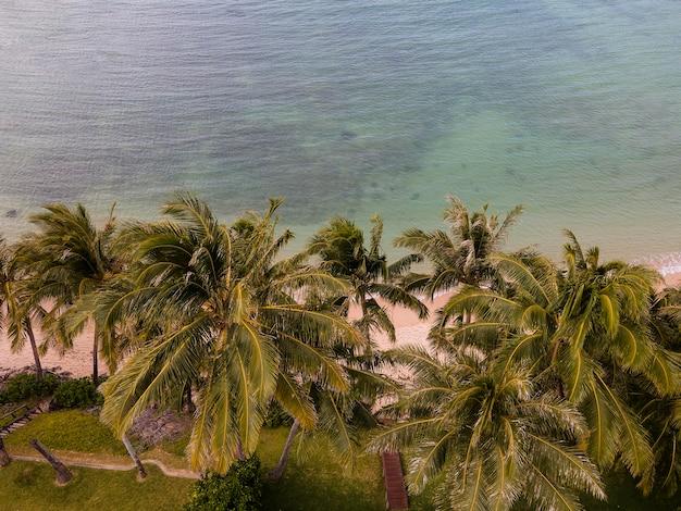 Zapierający dech w piersiach krajobraz hawajów z błękitnym morzem