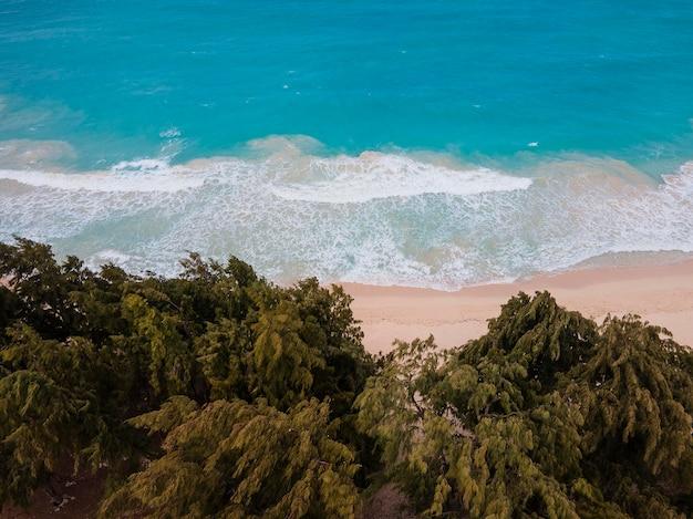 Zapierający dech w piersiach krajobraz hawajów z oceanem