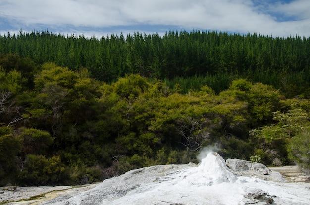 Zapierający dech w piersiach widok na wai-o-tapu w nowej zelandii