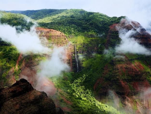 Zapierający dech w piersiach widok na wspaniałe mgliste góry i klify porośnięte drzewem
