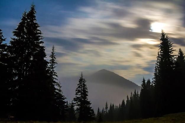 Zapierający dech w piersiach widok wspaniałych mglistych karpat