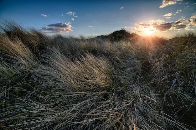 Zapierający dech w piersiach zachód słońca nad jesiennym polem pod bezchmurnym niebem